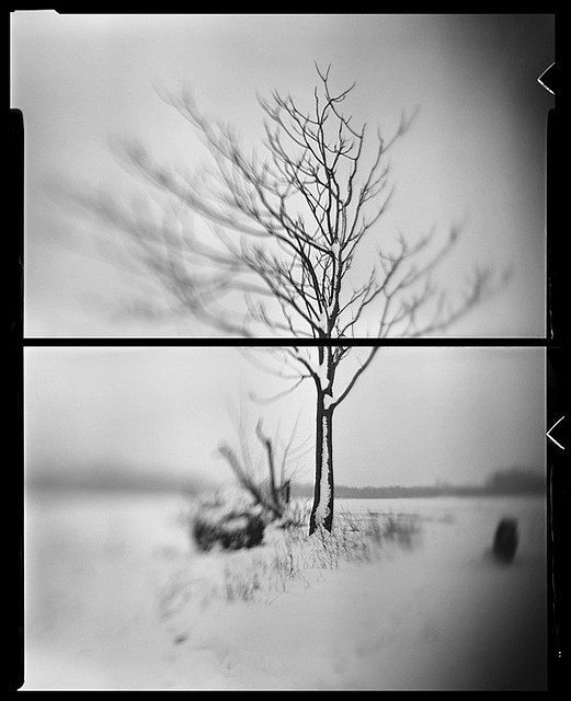 diptych_photography_14