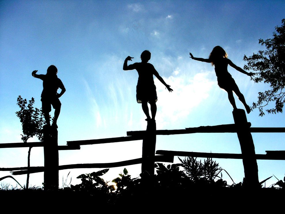 fence-silhouettes_59