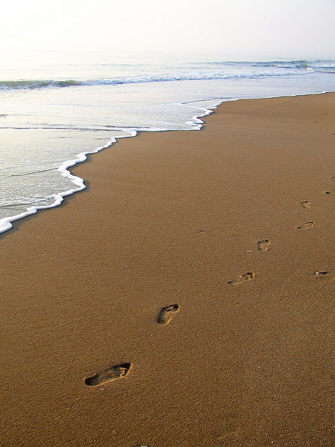 footprints_photo_2