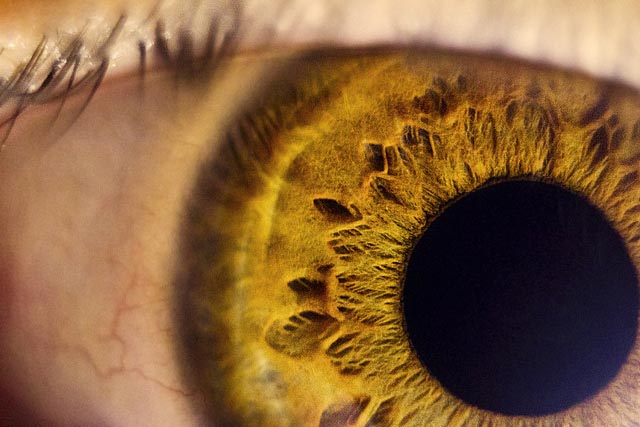 macro_eye_47