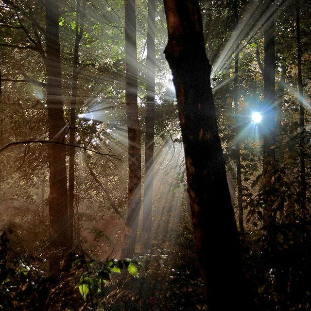 natural_night_light_beam_4