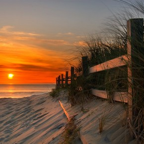 The Art Of Photographing Fence