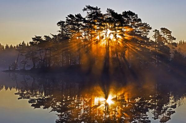 Heal Me by Sunrise