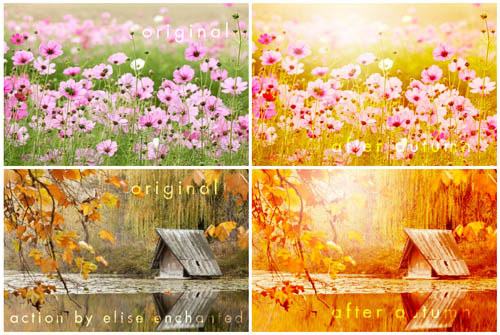 after_autumn_by_eliseenchanted-d38gmyb_30