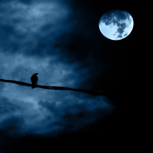 Full moon night_15