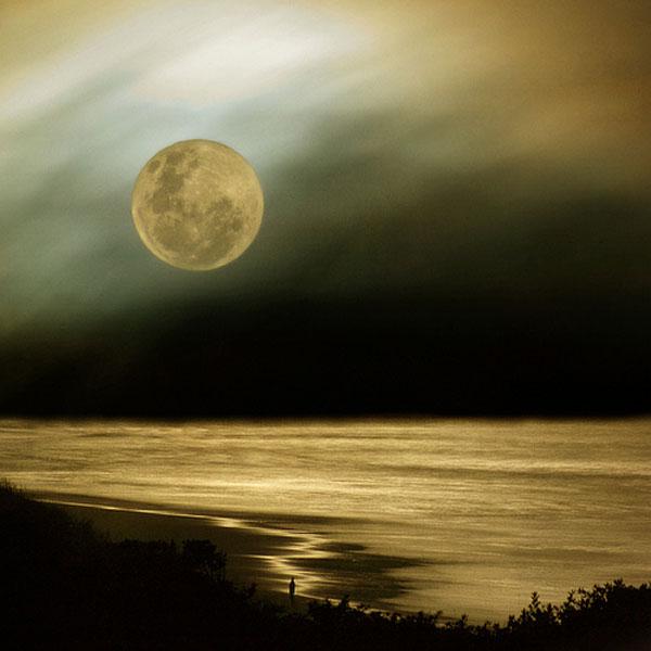 Moon watch_16
