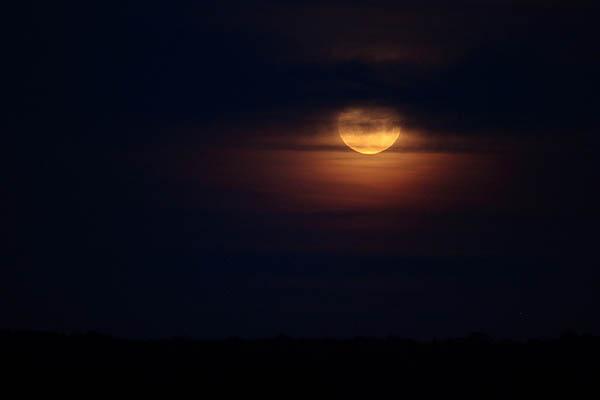 Super Moon_8