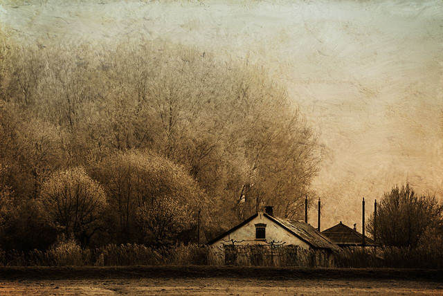 impression_of_countryside_walker_15