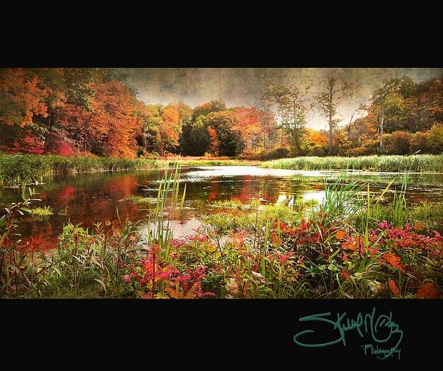 impressionistic_photo_17