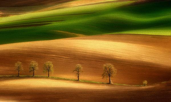 impressionistic_photograph_7