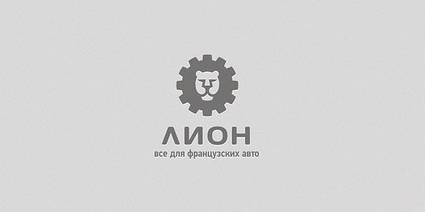 lion_30
