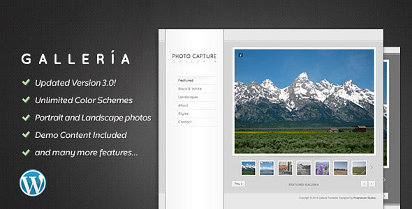 Galleria - Photography and Portfolio Theme
