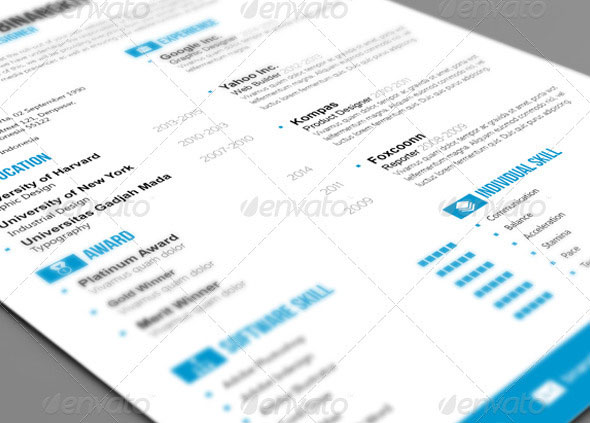 Sewon Clean Resume Template Volume 3
