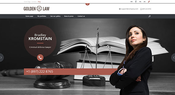 Golden Law - Multipurpose/Single Page/Shop Theme