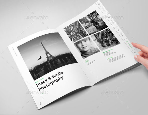 Stellar Portfolio - 32 Pages Booklet