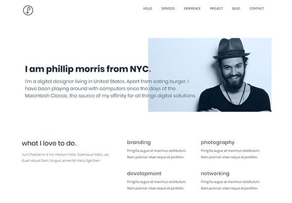 Precis | CV, Personal Portfolio WordPress Theme